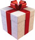Basispaket - Nur ein Muster - nicht kaufen!