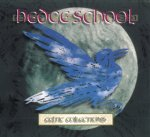 Hedge School - feiner Celtic Rock!