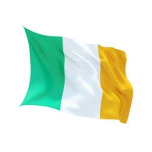 Irische Flagge klein: 80x55cm