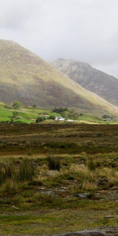 1305 Irland-Herzland