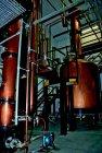 01543 ij 1.12 walisischer Whisky